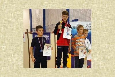 Mladí karatisti z Revúcej súťažili na turnaji v Starej Ľubovni