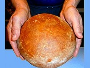 Sirkovskym nárečím: Takú páchu má len chlebík