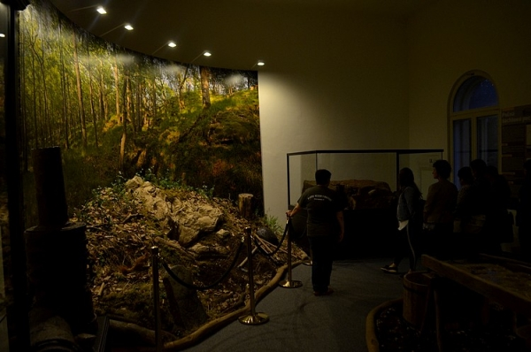 Záujem verejnosti o každoročné podujatie Noc múzeí a galérií sa opäť potvrdil