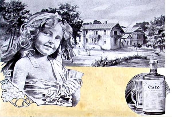 Kúpeľníctvo v Gemeri v 19. storočí