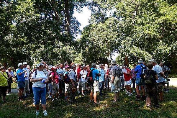 Šestnásty okresný turistický zraz seniorov okresu Revúca bol v Tornali