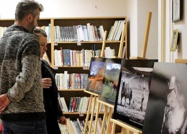 Fotosúťaž za rok 2019 má svojich víťazov