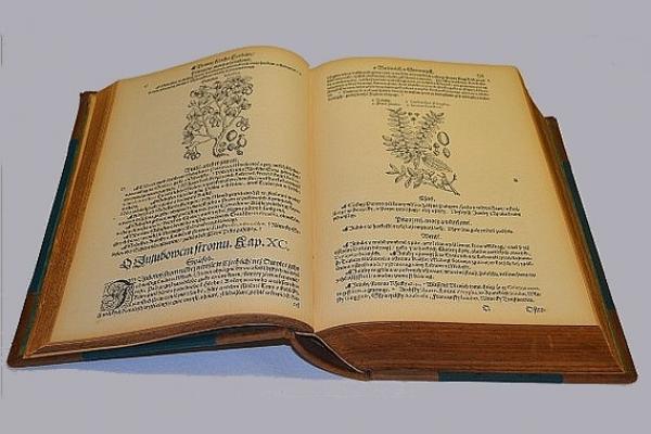 Herbář aneb Bylinář Wysoce učeného a wznesseného P. Doktora Petra Ondřeje Mathiola