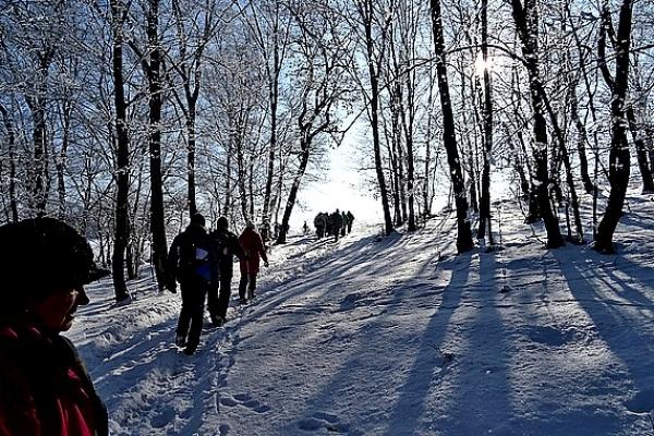 """Turistov pekným zimným prostredím trasa zaviedla z Ardova k """"Zlatej bani"""" a späť"""